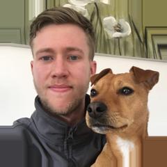 Dog Care in Blackpool and Preston